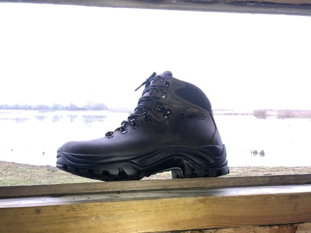 6 Best Hiking Shoes For Women With Bunions